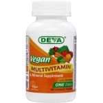 Vegan Multivitamin and Mineral Supplement - One Daily